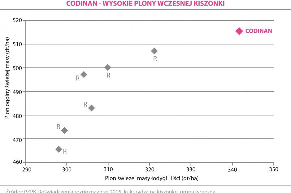 CODINAN - WYSOKIE PLONY WCZESNEJ KISZONKI