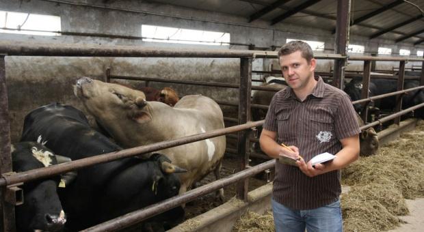 O mijającym roku i oczekiwaniach w nadchodzącym dla rynku wołowiny