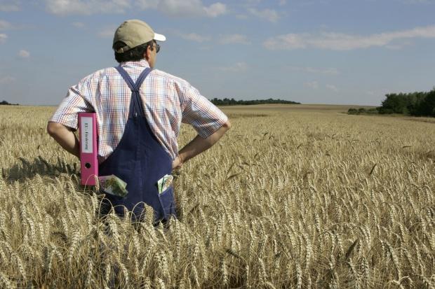 Rolnictwo – czy jest o czym mówić?