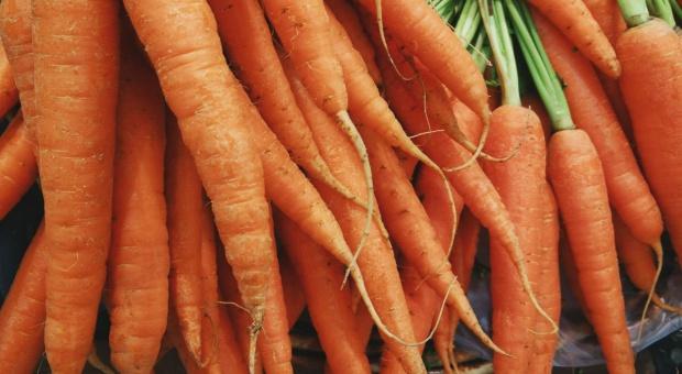 W Sieradzu powstanie zakład przetwórstwa owocowo-warzywnego