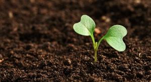 Rolnictwo regeneratywne - co to takiego?