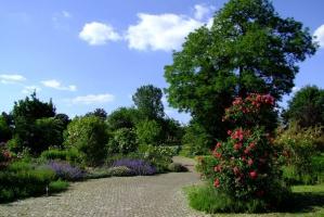 W Ogrodzie Botanicznym w Kielcach ma powstać ośrodek badawczy rolnictwa