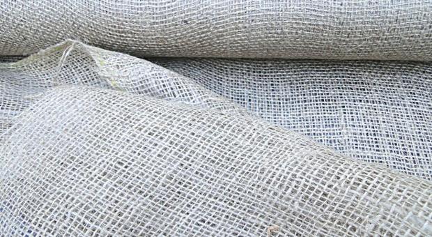 W Świętokrzyskiem uprawa konopi włóknistych na 260 hektarach