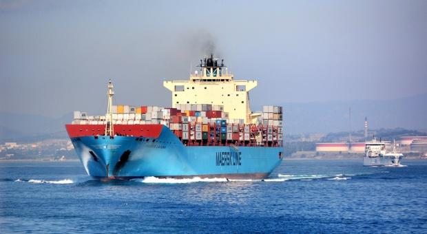 Ukraina: Rekordowa nadwyżka w handlu zagranicznym produktami rolniczymi