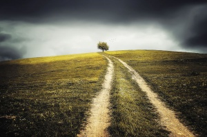 MRiRW: Nowe przepisy mają ukrócić bezprawne zajmowanie ziemi