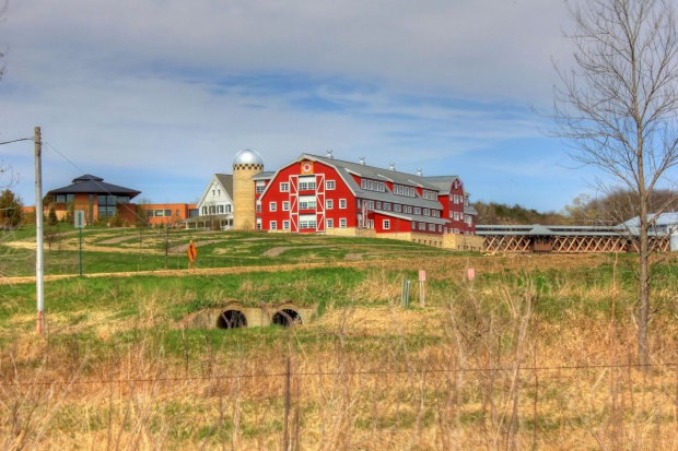 Eksperci: Gospodarstwa rodzinne mogą nie sprostać konkurencji rolnictwa z USA