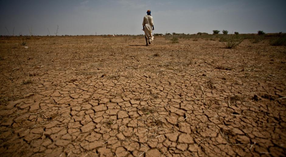 Klęska suszy w RPA - nadchodzą ciężkie czasy