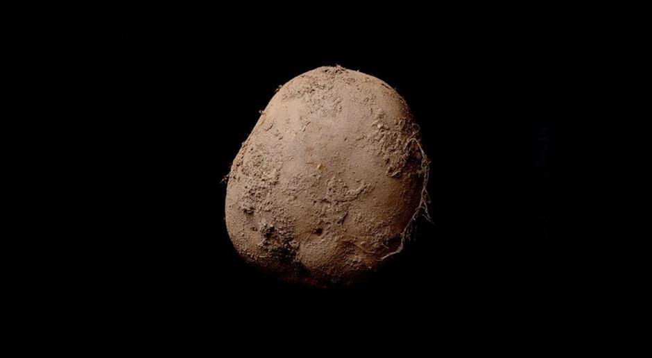 Fotografia ziemniaka sprzedana za 1 mln euro