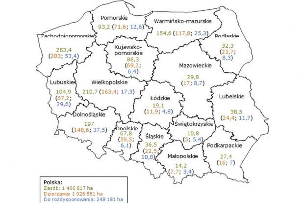 ANR w 2015 r. sprzedała ok. 77 tys. hektarów