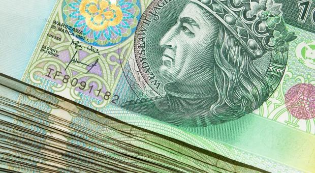 Kredyt w okresie oczekiwania na płatności bezpośrednie