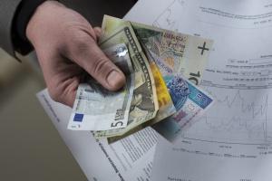Czy budżet państwa zarabia na opóźnieniu wypłaty dopłat bezpośrednich?
