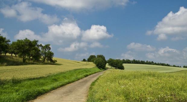 MRiRW: Dodatkowa analiza wątpliwych transakcji ziemią
