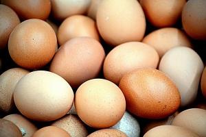 Wiejskie jaja z wysokim poziomem dioksyn