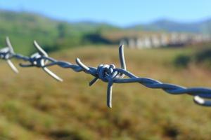 WTO skrytykowała Rosję za naruszenie umowy SPS
