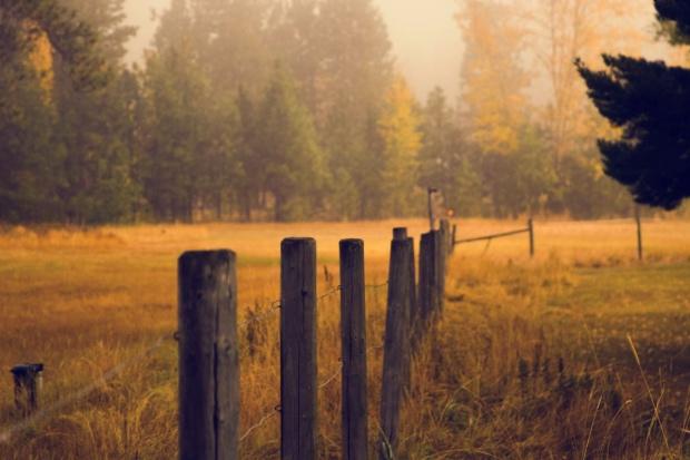 RPO: W projekcie ustawy dot. obrotu ziemią są zbyt daleko idące ograniczenia