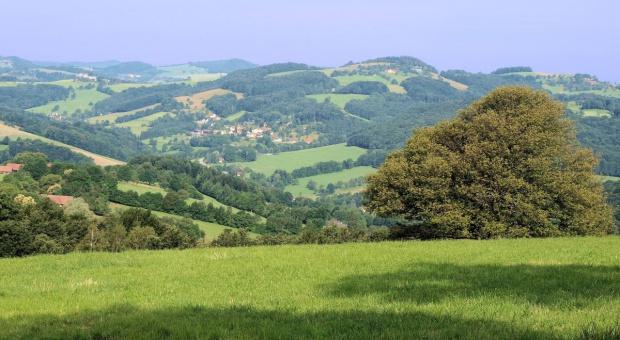 UE: Audytorzy krytykują wydawanie środków na rozwój obszarów wiejskich