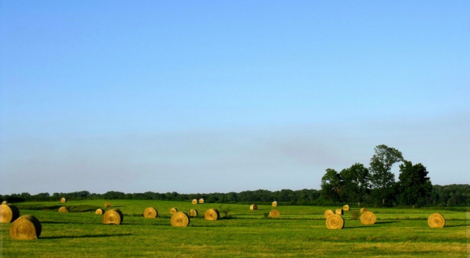 Wiceminister rolnictwa: Ustawa ma chronić polską ziemię przed spekulacją