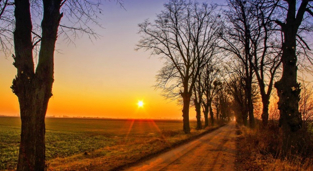 Sejmik woj. lubelskiego krytycznie o zmianach w handlu ziemią