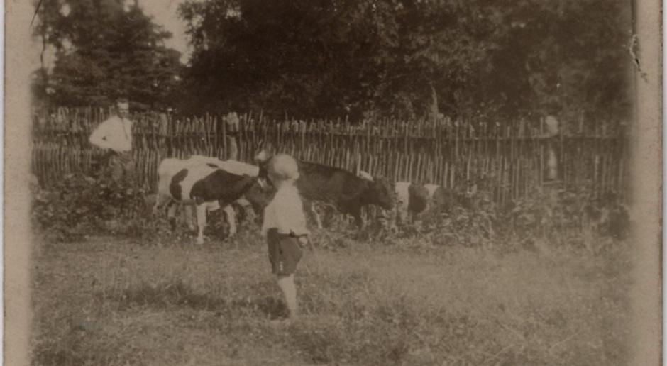 Witold Pilecki - zdolny rolnik z Sukurcz