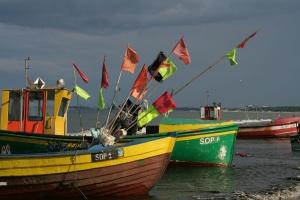 Państwa UE porozumiały się z PE ws. planu zarządzania zasobami ryb na Bałtyku
