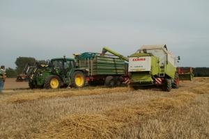 Niemcy: Zbiory zbóż prawie takie jak w 2015 r.