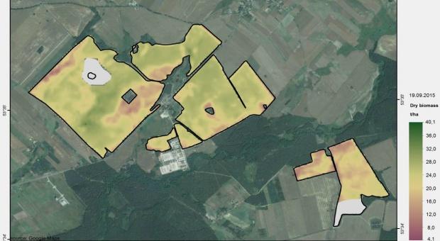 Serwis SERENE dostarcza plantatorom danych o biomasie
