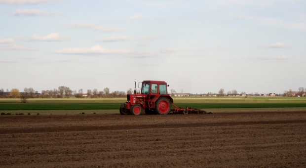 Ukraina zakończyła kampanię zasiewów roślin ozimych
