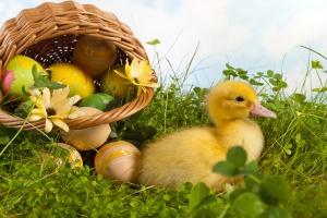 Święta ekologiczniej i tradycyjniej