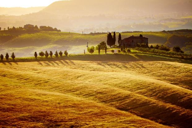 Włochy: Coraz mniej ziemi rolniczej