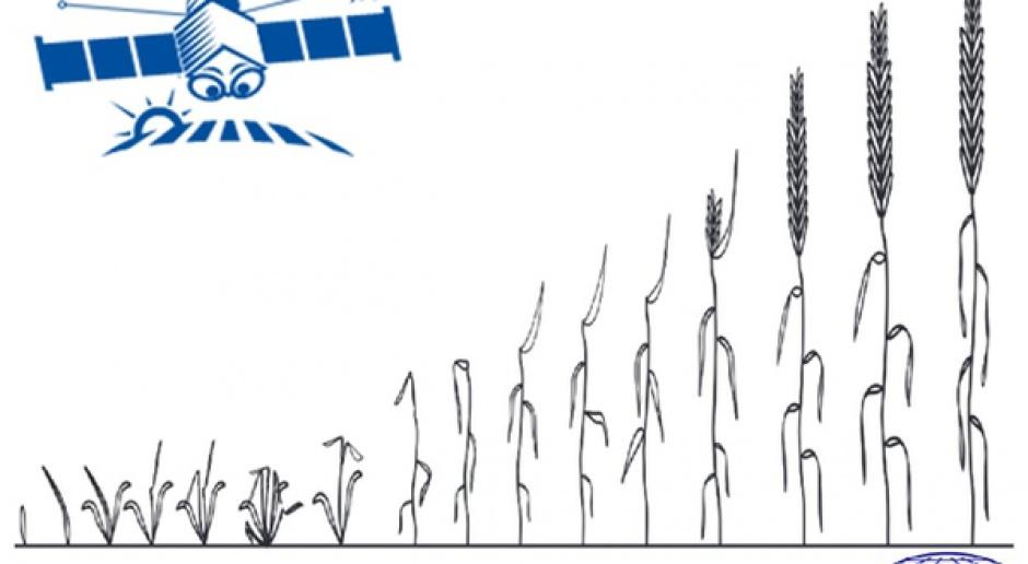 Monitoring upraw przez cały sezon wegetacyjny w ramach ASAP