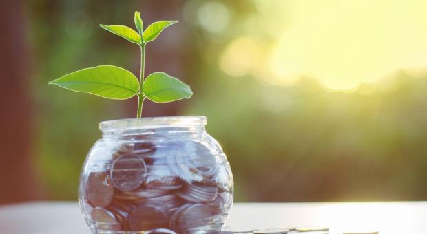 Ruszają płatności rolnośrodowiskowo-klimatyczne