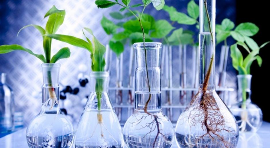Po raz pierwszy mniej upraw GMO na świecie