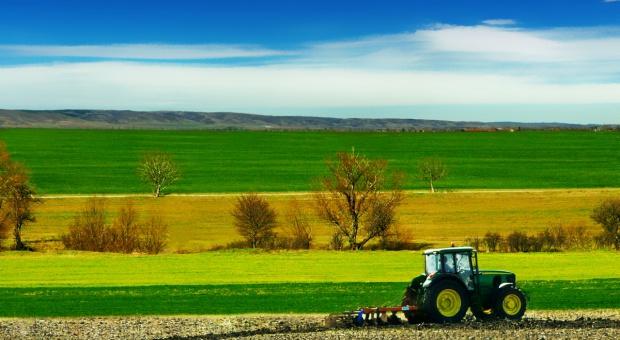 """Ile azotu w """"Rolnictwie zrównoważonym""""?"""