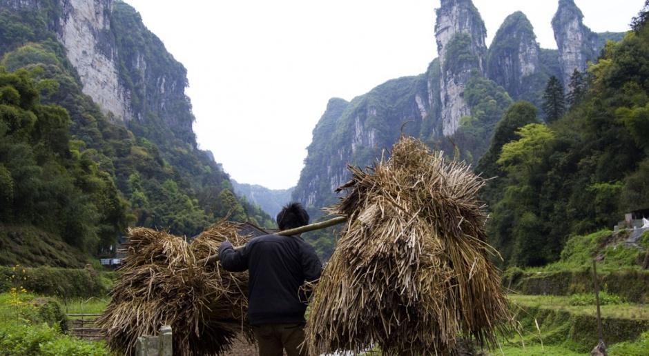 ONZ zaniepokojona sytuacją żywnościową i zdrowotną w Korei Północnej