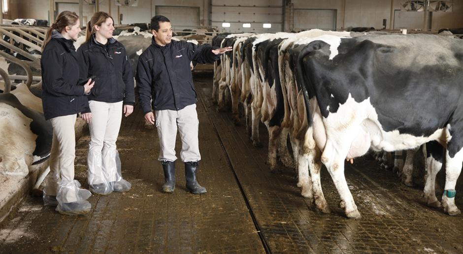Alltech kontynuuje inwestycje w przyszłych liderów branży mlecznej