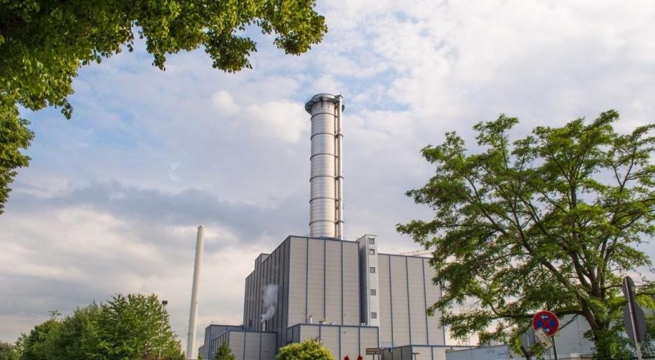 """""""E-węgiel"""": pomysł LP na aukcję CO2 pochłoniętym przez lasy"""
