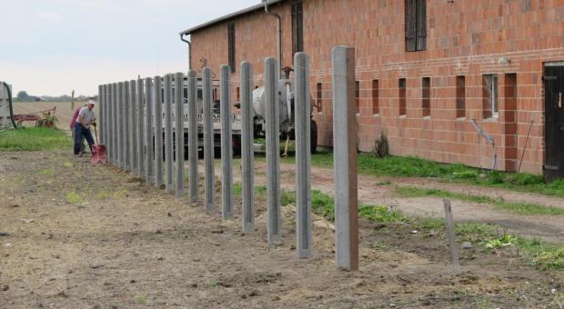 Będzie wyższa pomoc na inwestycje w ogrodzenie przed ASF