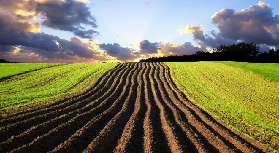 KOWR: kurczy się państwowy zasób ziemi