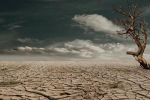 UE: Więcej środków na zwalczanie problemów bezpieczeństwa żywności