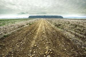 Kazachstan: Reforma rolna zawieszona