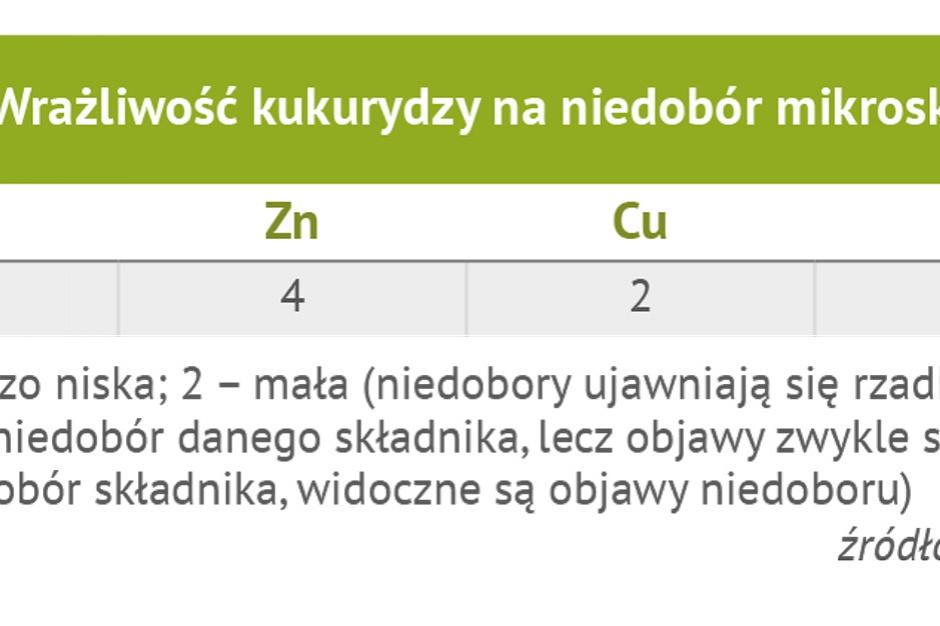 Wrażliwość kukurydzy na niedobór mikroskładników; źródło: Grzebisz 2012 - modyfikacja