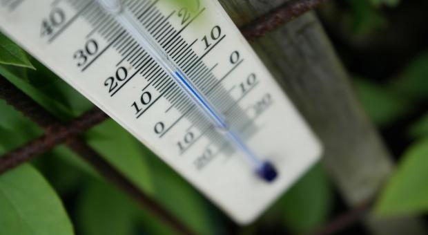 Miniony kwiecień był najcieplejszy w historii