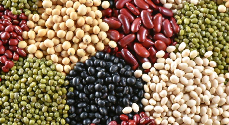 Ukraina: Wzrost eksportu nasion strączkowych