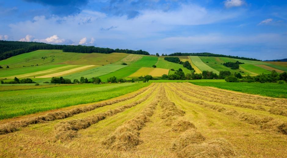 Senat za zmianą przepisów dot. finansowania wspólnej polityki rolnej