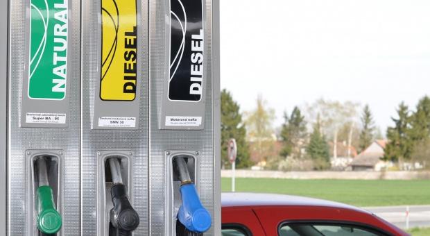 Biodiesel źródłem wysokiej emisji dwutlenku węgla