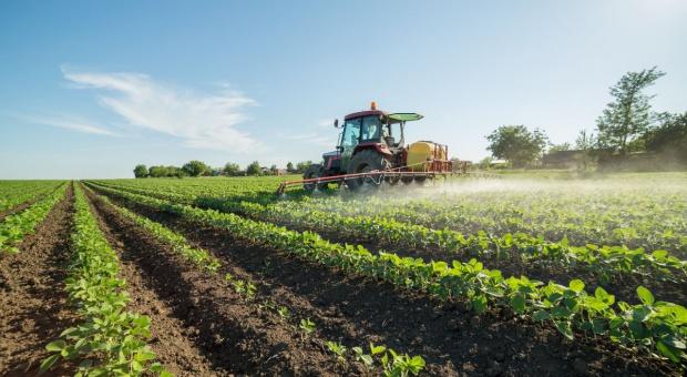 Kanada: Surowce i rolnictwo - źródła zanieczyszczeń i przyczyny zmian klimatu
