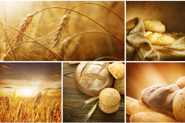 Czy Polska ma dość zapasów żywności?
