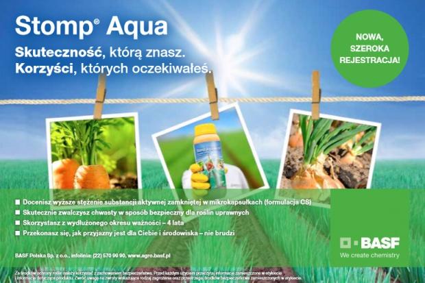 Ważny herbicyd w integrowanej ochronie roślin rolniczych przed chwastami