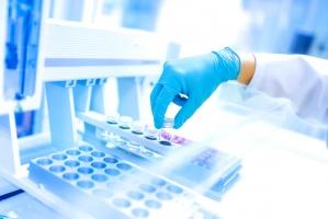 Alltech otwiera w Europie laboratorium mikotoksyn
