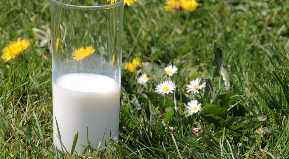 Jak Niemcy pomogą producentom mleka?